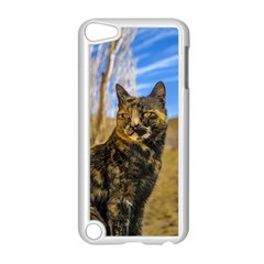 Adult Wild Cat Sitting And Watching Apple Ipod Touch 5 Case (white) by dflcprints