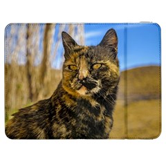 Adult Wild Cat Sitting And Watching Samsung Galaxy Tab 7  P1000 Flip Case by dflcprints