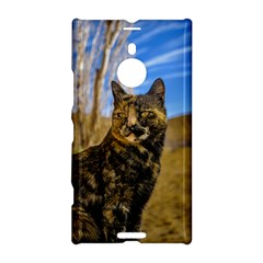 Adult Wild Cat Sitting And Watching Nokia Lumia 1520 by dflcprints