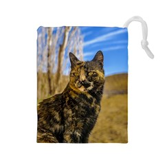 Adult Wild Cat Sitting And Watching Drawstring Pouches (large)  by dflcprints