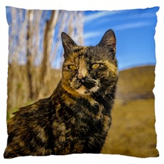 Adult Wild Cat Sitting And Watching Standard Flano Cushion Case (two Sides) by dflcprints