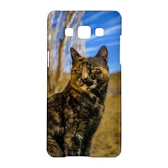 Adult Wild Cat Sitting And Watching Samsung Galaxy A5 Hardshell Case  by dflcprints