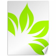 Leaf Green White Canvas 36  X 48   by Mariart