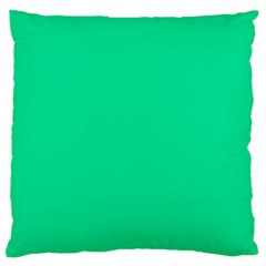 Neon Color   Vivid Aquamarine Large Flano Cushion Case (two Sides) by tarastyle