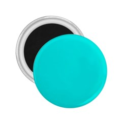 Neon Color   Vivid Cyan 2 25  Magnets by tarastyle