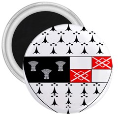 County Kilkenny Coat Of Arms 3  Magnets by abbeyz71