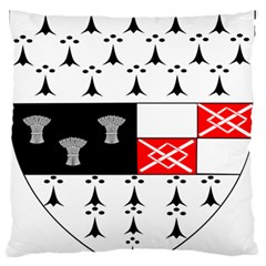 County Kilkenny Coat Of Arms Standard Flano Cushion Case (two Sides) by abbeyz71