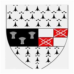 County Kilkenny Coat Of Arms Medium Glasses Cloth (2 Side) by abbeyz71