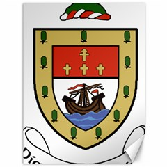 County Mayo Coat Of Arms Canvas 36  X 48   by abbeyz71