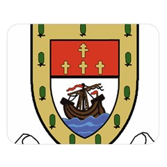 County Mayo Coat Of Arms Double Sided Flano Blanket (large)  by abbeyz71