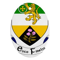 County Offaly Coat Of Arms  Ornament (oval) by abbeyz71