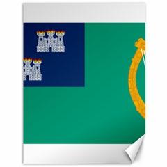 City Of Dublin Flag Canvas 36  X 48   by abbeyz71