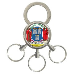 City Of Dublin Coat Of Arms 3 Ring Key Chains by abbeyz71