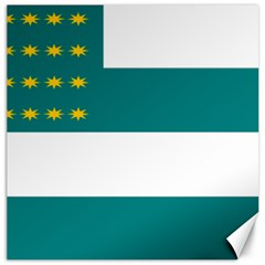Flag Of Fenian Brotherhood Canvas 12  X 12   by abbeyz71