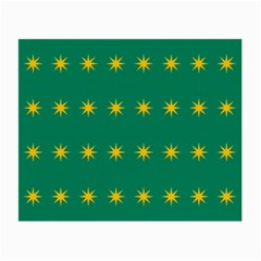 32 Stars Fenian Flag Small Glasses Cloth (2 Side) by abbeyz71
