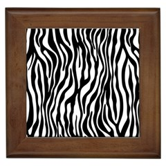 Zebra Stripes Pattern Traditional Colors Black White Framed Tiles by EDDArt