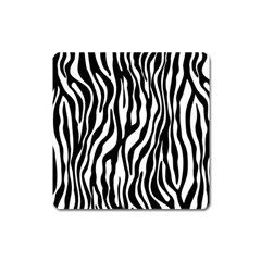 Zebra Stripes Pattern Traditional Colors Black White Square Magnet by EDDArt