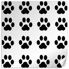 Claw Black Foot Chat Paw Animals Canvas 16  X 16   by Mariart