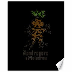 Mandrake Plant Canvas 16  X 20   by Valentinaart