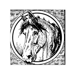 Framed Horse Small Satin Scarf (square)