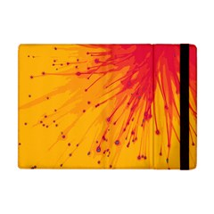 Big Bang Apple Ipad Mini Flip Case by ValentinaDesign