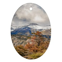 Forest And Snowy Mountains, Patagonia, Argentina Ornament (oval) by dflcprints