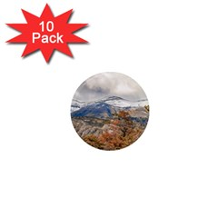 Forest And Snowy Mountains, Patagonia, Argentina 1  Mini Magnet (10 Pack)  by dflcprints