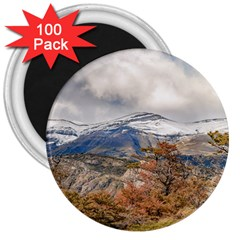 Forest And Snowy Mountains, Patagonia, Argentina 3  Magnets (100 Pack) by dflcprints