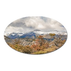 Forest And Snowy Mountains, Patagonia, Argentina Oval Magnet by dflcprints