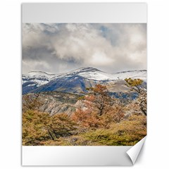 Forest And Snowy Mountains, Patagonia, Argentina Canvas 18  X 24   by dflcprints