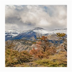 Forest And Snowy Mountains, Patagonia, Argentina Medium Glasses Cloth by dflcprints