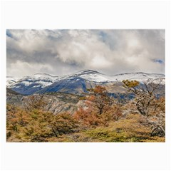 Forest And Snowy Mountains, Patagonia, Argentina Large Glasses Cloth