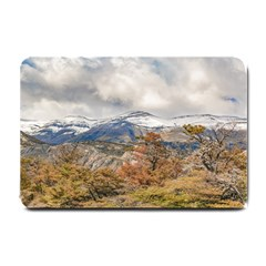 Forest And Snowy Mountains, Patagonia, Argentina Small Doormat  by dflcprints