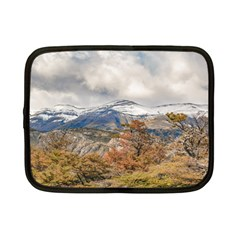 Forest And Snowy Mountains, Patagonia, Argentina Netbook Case (small)  by dflcprints