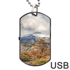 Forest And Snowy Mountains, Patagonia, Argentina Dog Tag Usb Flash (one Side) by dflcprints