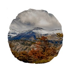 Forest And Snowy Mountains, Patagonia, Argentina Standard 15  Premium Round Cushions by dflcprints