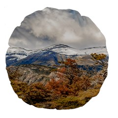 Forest And Snowy Mountains, Patagonia, Argentina Large 18  Premium Flano Round Cushions by dflcprints
