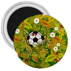 Ball On Forest Floor 3  Magnets by linceazul