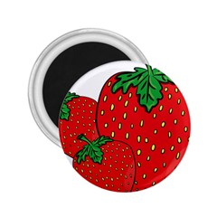 Strawberry Holidays Fragaria Vesca 2 25  Magnets