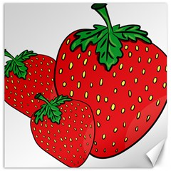 Strawberry Holidays Fragaria Vesca Canvas 16  X 16   by Nexatart