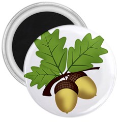 Acorn Hazelnuts Nature Forest 3  Magnets by Nexatart