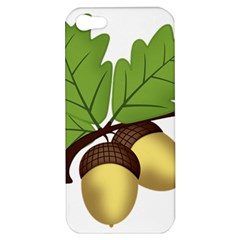 Acorn Hazelnuts Nature Forest Apple Iphone 5 Hardshell Case by Nexatart