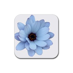 Daisy Flower Floral Plant Summer Rubber Coaster (square)  by Nexatart