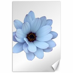 Daisy Flower Floral Plant Summer Canvas 12  X 18   by Nexatart