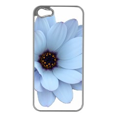 Daisy Flower Floral Plant Summer Apple Iphone 5 Case (silver) by Nexatart