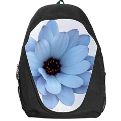 Daisy Flower Floral Plant Summer Backpack Bag by Nexatart