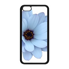 Daisy Flower Floral Plant Summer Apple Iphone 5c Seamless Case (black) by Nexatart