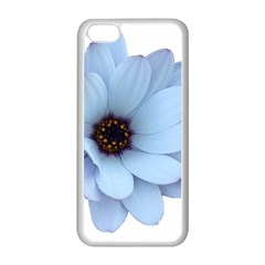 Daisy Flower Floral Plant Summer Apple Iphone 5c Seamless Case (white) by Nexatart