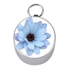 Daisy Flower Floral Plant Summer Mini Silver Compasses by Nexatart