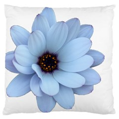 Daisy Flower Floral Plant Summer Standard Flano Cushion Case (one Side) by Nexatart